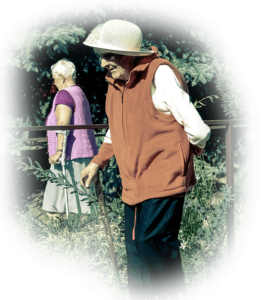 domseniorawarszawa3 261x300