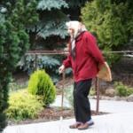 opieka dla seniora mazowieckie